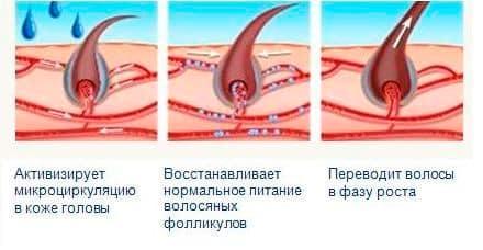 Принцип действия миноксидила