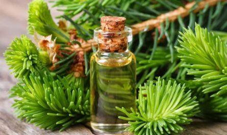 Использование пихтового масла для лица