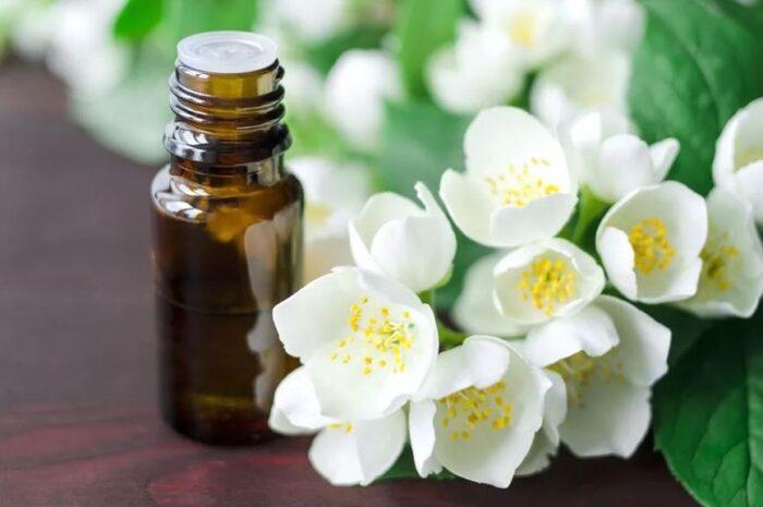 Применение эфирного масла жасмина в косметологии для ухода за кожей лица