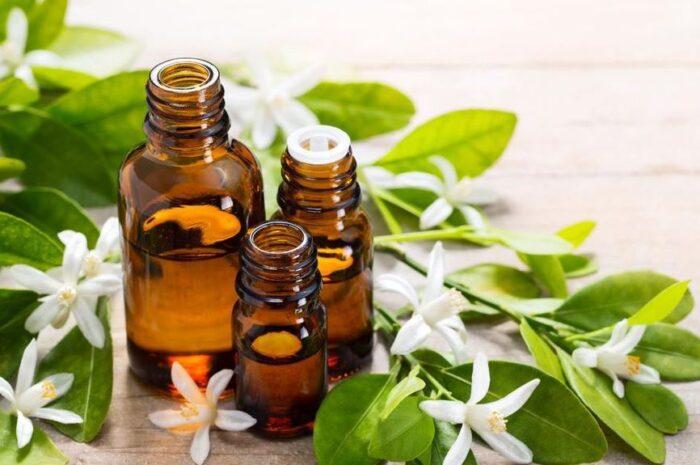 Чудодейственные косметологические свойства масла нероли и его применение для лица