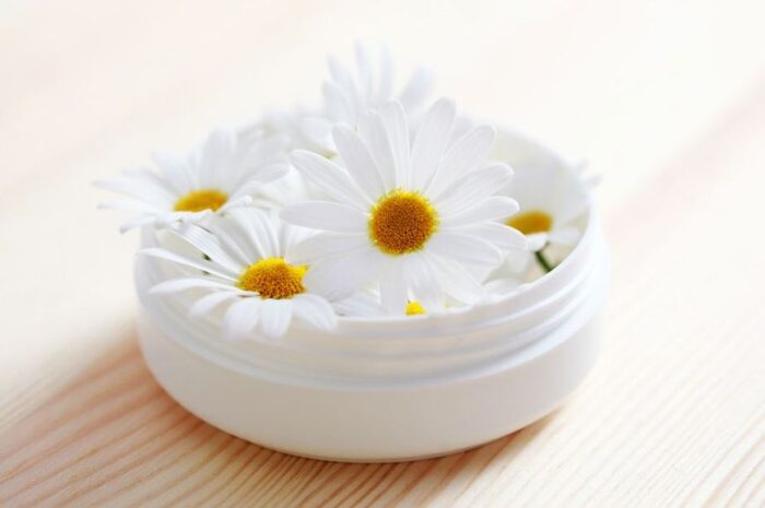 Применение для лица масла ромашки: 5 масел и много пользы