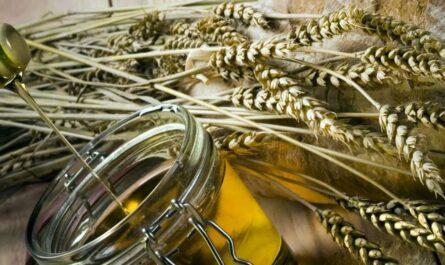 Применение косметического масла зародышей пшеницы для лица