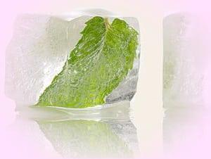зеленый чай лед для лица